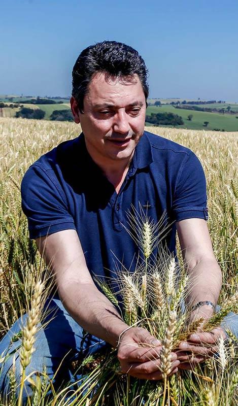 Deputado Sérgio Souza colhendo trigo no Paraná