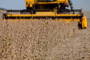 BNDES oferece linha de R$ 5 bilhões para renegociação de crédito rural