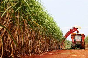 Comissão discute venda direta do etanol aos postos de combustíveis