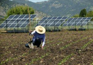 FPA critica proposta da Aneel de taxar a energia solar